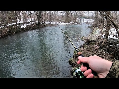 Small Creek TROUT Fishing