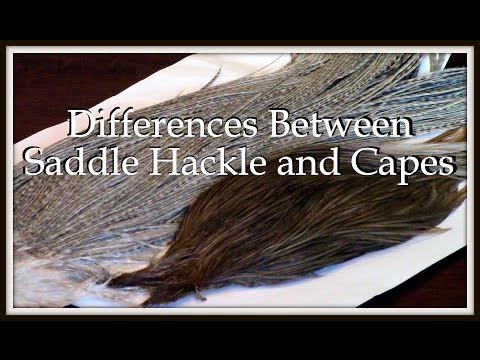 Fly Tying: Differences Between Saddle Hackle and Capes