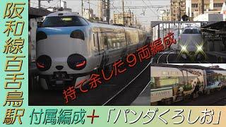 持て余した付属編成+「パンダくろしお」の287系9両編成 阪和線百舌鳥駅通過!