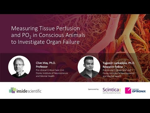 Measuring Tissue Perfusion and PO2 in Conscious Animals to Investigate Organ Failure