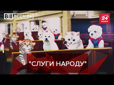 """Ручні тваринки у  """"Слузі народу """"?, Вєсті.UA. Жир, 21 вересня 2019"""