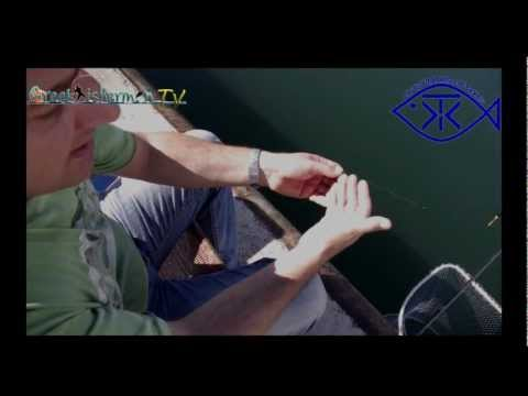 Dorada and Sargo Fishing with float and zoha tixi.mp4
