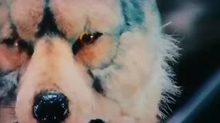 年越しはトーキョー・タナカで!! 第二弾♪ KEWL&TOUGH(?)なタナパイの...