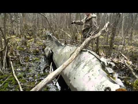 видео: Коп по войне - Война в болотах (часть 2) -