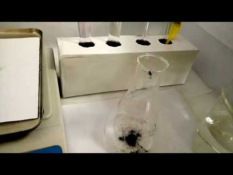 Water Soluble Test of Spirulina Powder