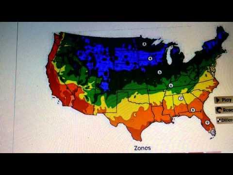 Garden Hardiness Zone Map