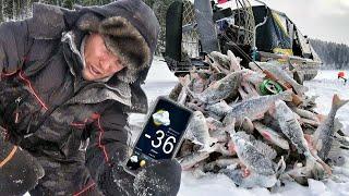 НЕ ДАЮТ ОПУСТИТЬ С НОЧЁВКОЙ В ЛОДКЕ В ДУБАК Рыбалка 2021