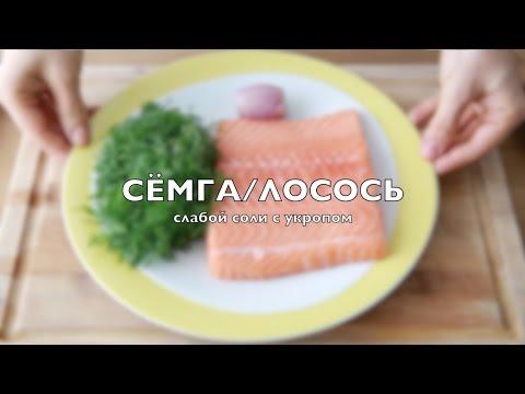 Как засолить красную рыбу  Как приготовить малосольную сёмгу