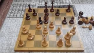 Как правильно начинать партию, атака на рокировку. Шахматы. Урок 8.