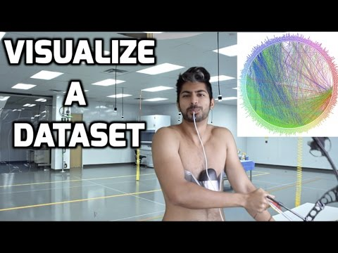 The Best Way to Visualize a Dataset Easily