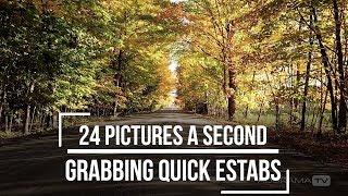 Grabbing Quick Estabs - 24 Pictures A Second