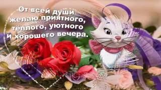 Желаю всем хорошего вечера! Легких, добрых мыслей, позитивных новостей, хороших людей.