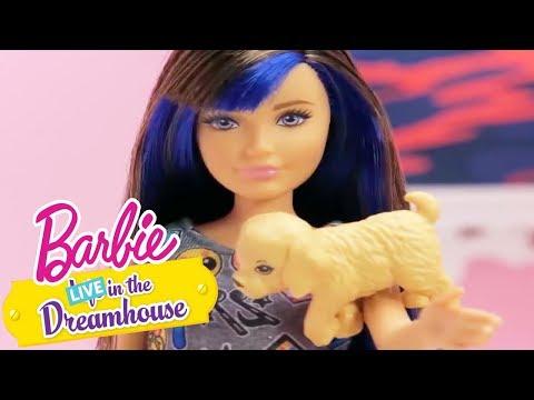 Barbie Deutsch | Hundewelpeninvasion | Barbie LIVE! In The Dreamhouse | Barbie Videos für Kinder
