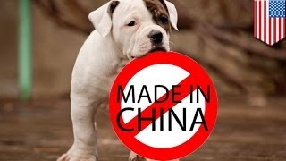 Petco, PetSmart to stop selling made in China dog and cat treats