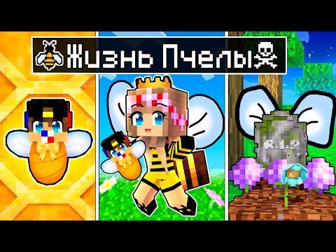 Майнкрафт но ЖИЗНЬ Девушки Пчела от ДЕТСТВА до СТАРОСТИ в Майнкрафте Троллинг Ловушка Minecraft