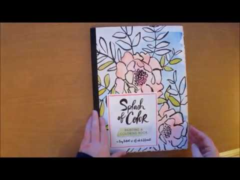 Splash Of Color Painting and Coloring Book by Liz Libre Colouring Book Flipthrough