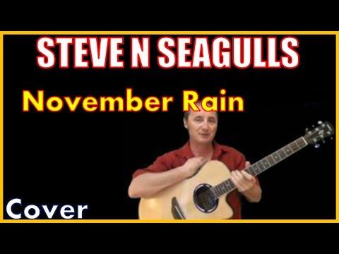 November Rain Steve N Seagulls Lyrics And Cover