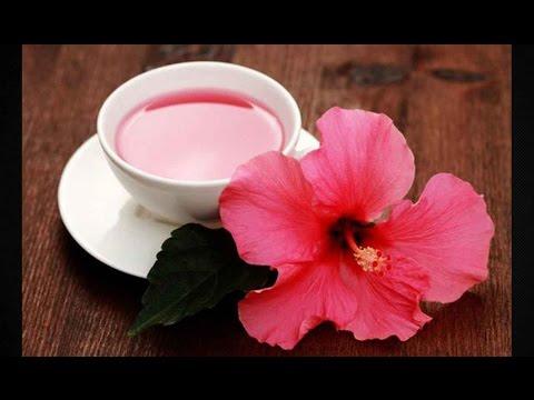Полезные свойства чая каркаде и противопоказания