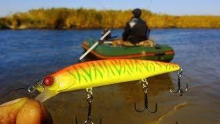 видео Ловля щуки в октябре на кружки - Рыбалка, охота, отдых и туризм.
