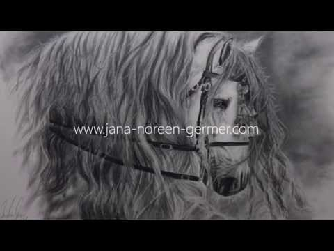 Portrait zeichnen lassen – Graphit Bleistift Zeichnung Pferd Portrait PRE Hengst Estudiante MAT