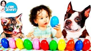 ►ДОМАШНИЕ ЖИВОТНЫЕ и их ГОЛОСА, РАЗВИВАЮЩЕЕ ВИДЕО для ДЕТЕЙ/PETS and their voices