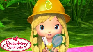 Building a new House! | Strawberry Shortcake | Cartoons for Kids | WildBrain Kids