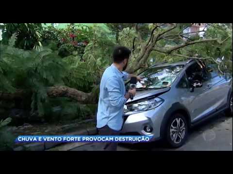 Chuva e vento forte provocam destruição em São Paulo