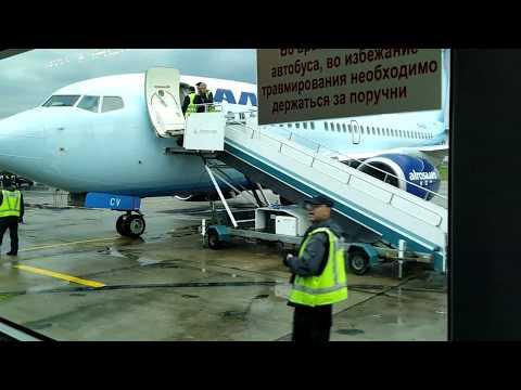 . Самолет-Здание аэровокзала Домодедово. Поездка на трансфере. 5 сентября 2019 г.