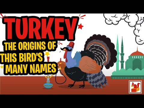 Turkey - The Origins of this Bird's Many Names - in a Nutshell