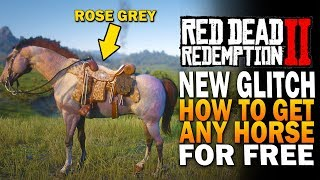 NEW GLITCH! How to Get ANY HORSE For FREE! Red Dead Redemption 2 Secrets