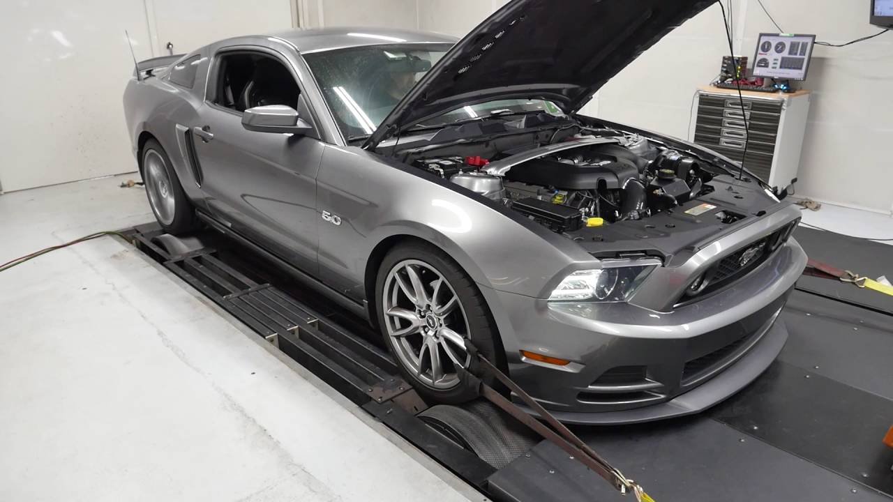 2014 Ford Mustang Gt Procharger Dyno Pull 710 Hp
