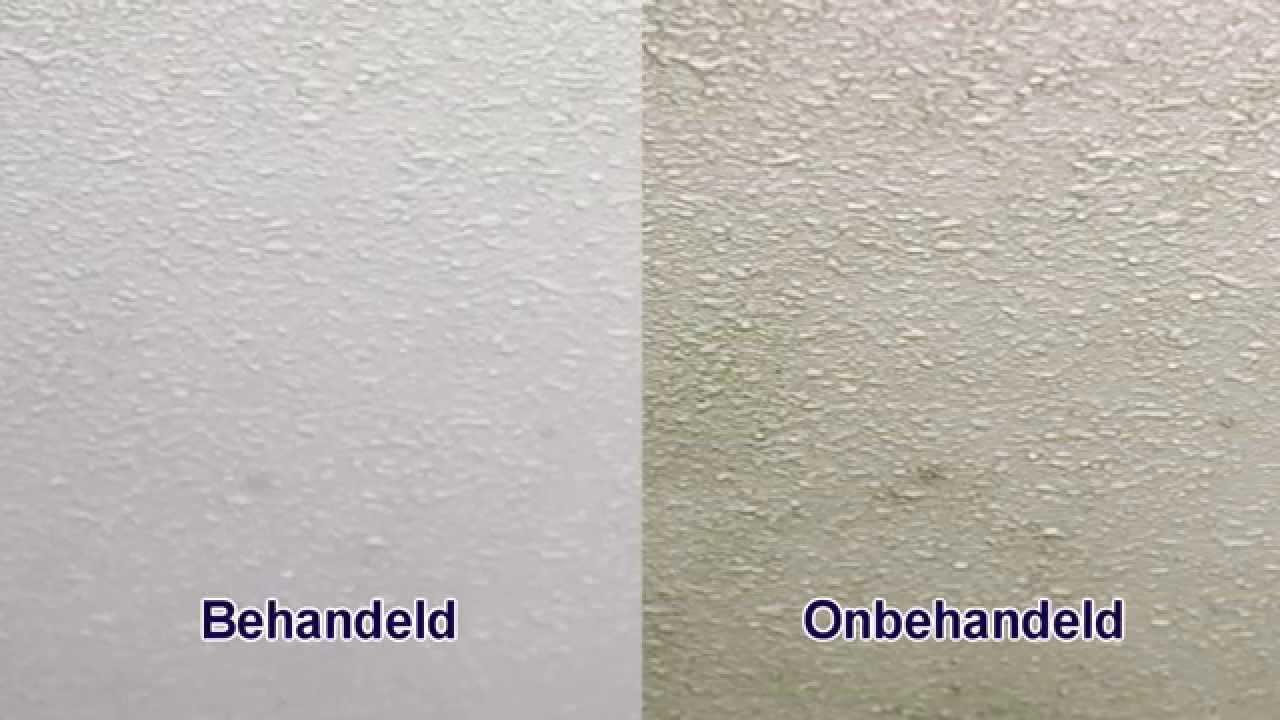 Schimmel plafond verwijderen  Ochtend schoonmaakwerk