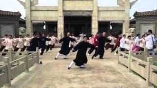 yang tai chi 8 postures at fu zhong wen memorial yong nian china