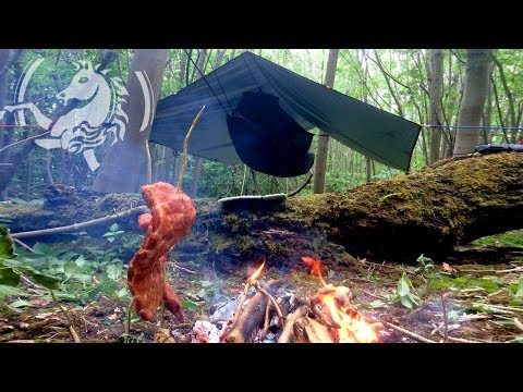 Solo Wild Hammock Camp With Smoked BBQ Ribs