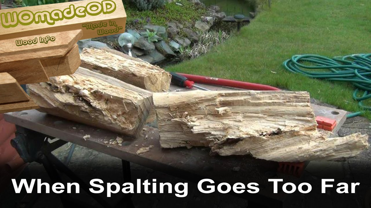 Spalting In Wood Youtube