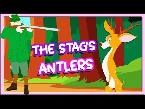 The Stag'S Antlers   Moral Stories For Kids In English   Animated English Story   Tuk Tuk Tv