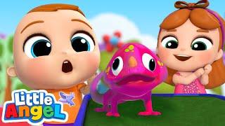 Reptiles Show Song | Little Angel Kids Songs & Nursery Rhymes