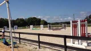 Pony Club Eventing Rally At Rocking Horse Stables- Paint Pony For Free Lease In Melbourne, Fl