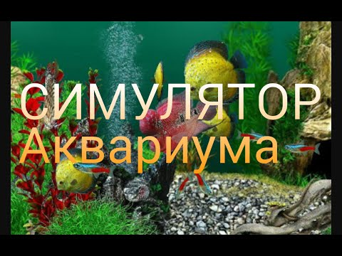 Обзор игры AquaLife 3D. Симулятор аквариума!