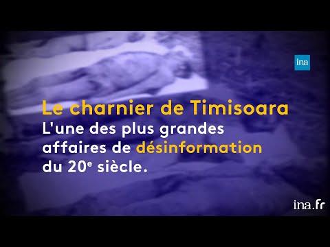 Charnier De Timisoara, Un Fiasco Médiatique | Franceinfo INA