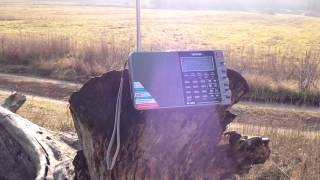 Shortwave listening in the Russian field.