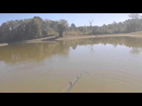Bass fishing in Neshoba County Mississippi