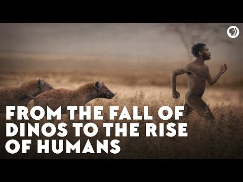 From the Fall of Dinos to the Rise of Humans