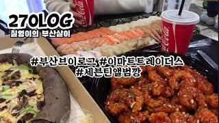 부산브이로그   메산즈모임   이마트트레이더스   먹방…