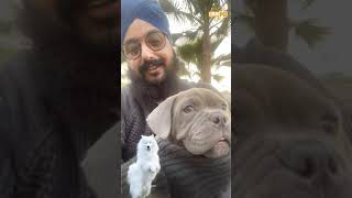 ਡੌਗੀ ਜ਼ਰੂਰ ਰੱਖ ਕੇ ਦੇਖੋ | Everyone should try and raise a dog in their household | Dhadrianwale