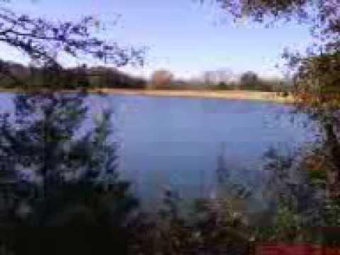 Lake Fannin