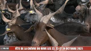 FÊTE DE LA CHÈVRE DU ROVE LES 22, 23 ET 24 OCTOBRE 2021