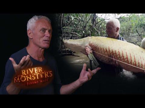 SUPERSIZE Arapaima Catch | JEREMY REACTS | River Monsters