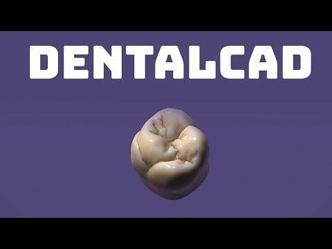 exocad DentalCAD Software   Powerful 3D CAD Design Software for Dental Labs