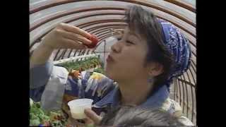 西村知美、小出由華 静岡の旅(1994) 1/3 小出由華 検索動画 12